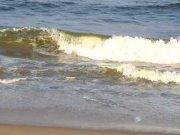 Chennai beach 2888
