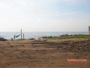 Royapuram beach 3729