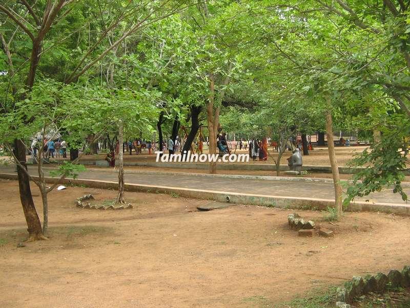 Guindy national park chennai