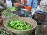 Bajji chilly for sale at koyambedu vegetable market 775