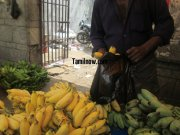 Banana vendor selling banana at koyambedu fruits market 874