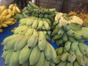 Bananas for sale at koyambedu fruits market 494