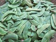 Beans for sale at koyambedu vegetable market 312