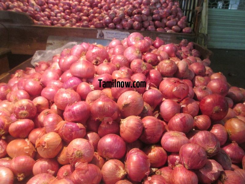 Big onions at koyambedu vegetable market 852