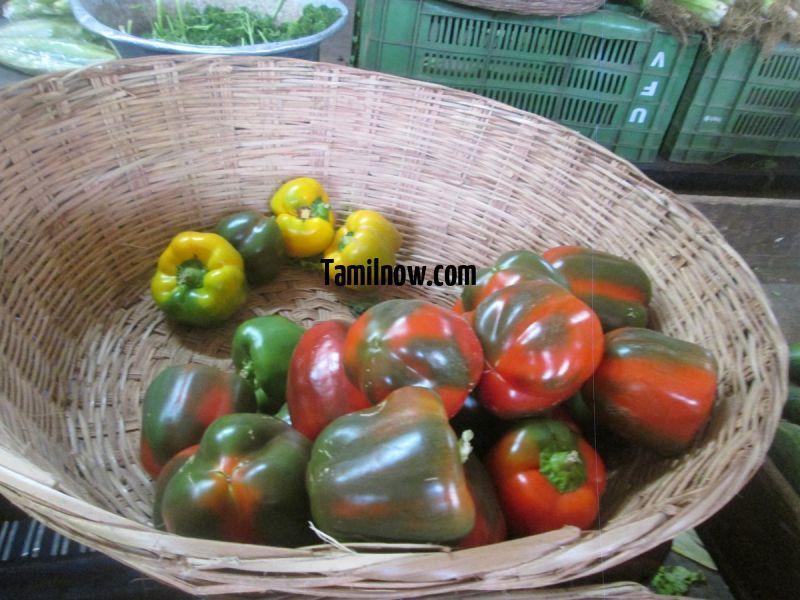 Capsicum for sale at koyambedu vegetable market 931