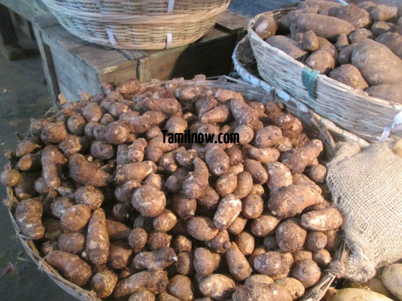 Colasia for sale at koyambedu vegetable market 677