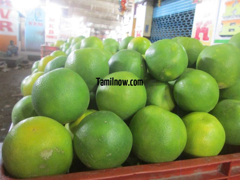 Mosambi for sale at koyambedu fruits market 354