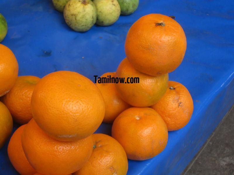 Oranges for sale at koyambedu fruits market 589
