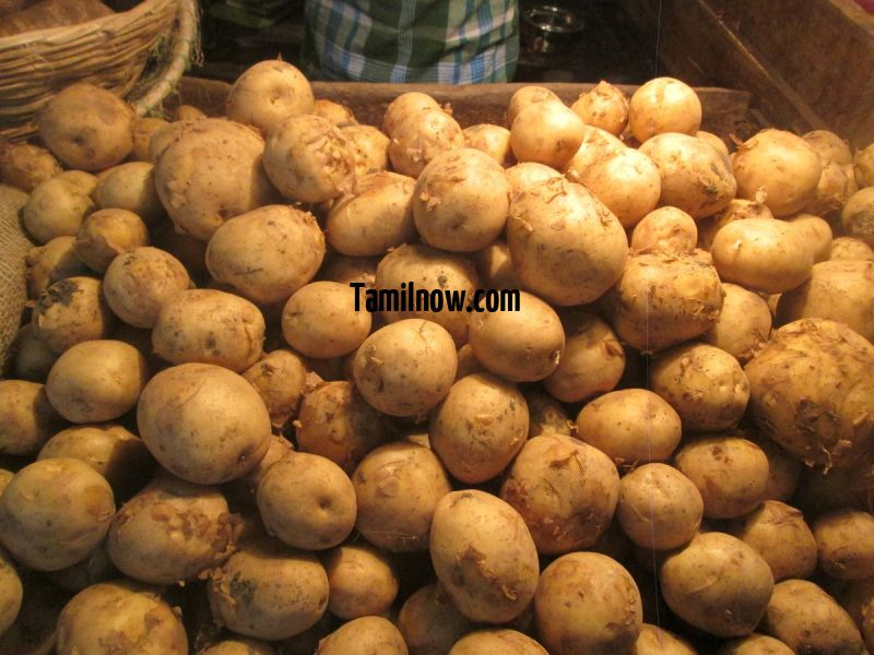 Potato for sale at koyambedu vegetable market 405