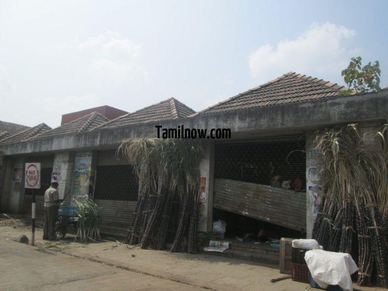 Sugarcane at koyambedu whole sale market 481