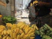 Yellow banana for sale at koyambedu fruits market 230