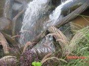 Fountain 3900