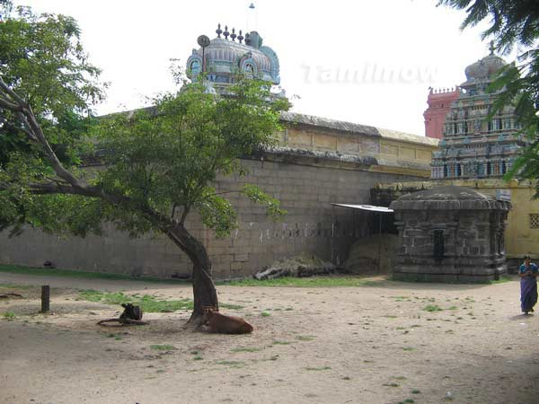 Thiruvotriyur temple 3