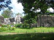 Vandalur Arinagar Anna Zoological Park