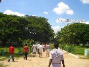 Arinagar zoological park 1