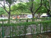 Vandalur park