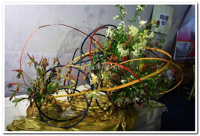 Flower arrangements photos 1