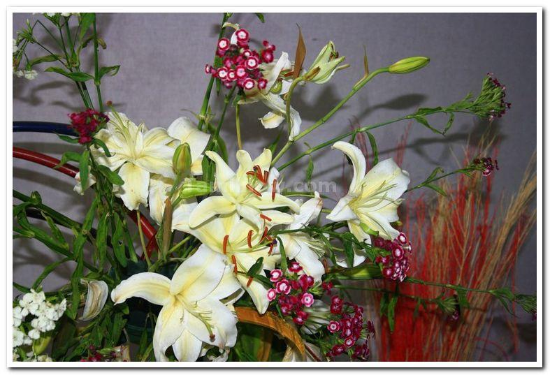Ikabana flower arrangement
