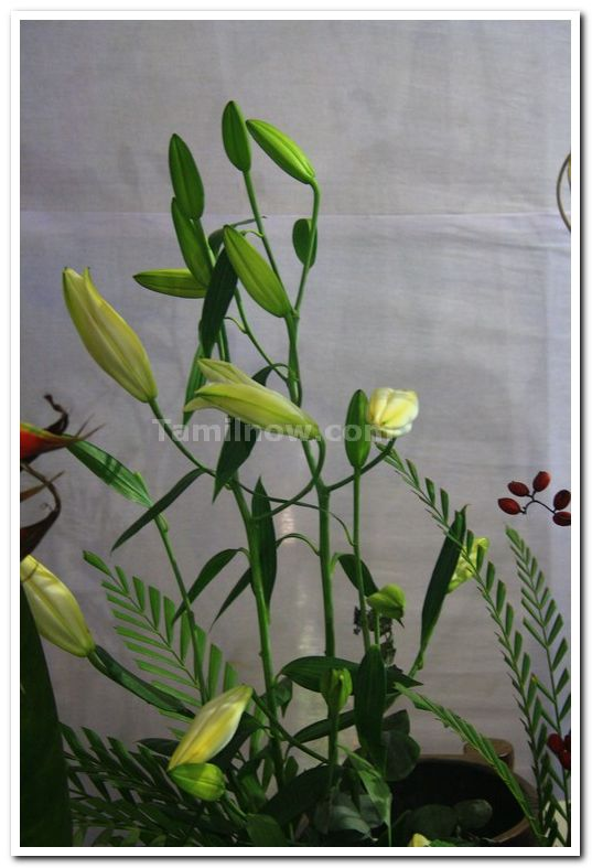 Ikebana flower arrangement 1