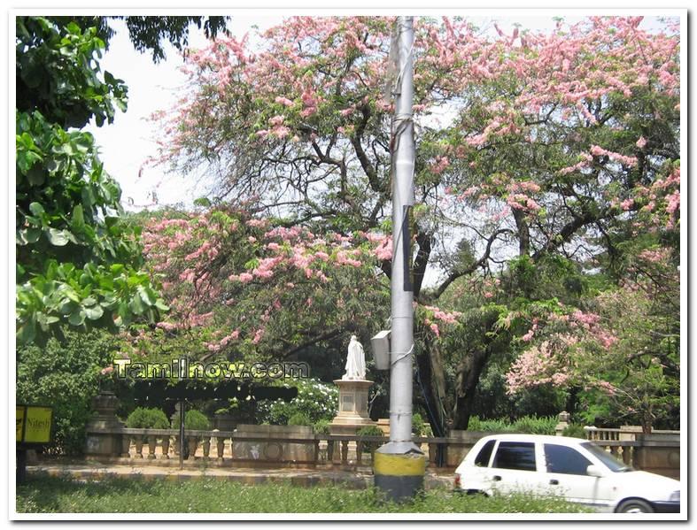 Bengaluru city photo 4