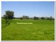 Belgaum fields