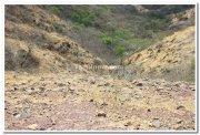 Dandoba hills maharashtra