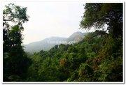 Dudhsagar waterfalls surroundings