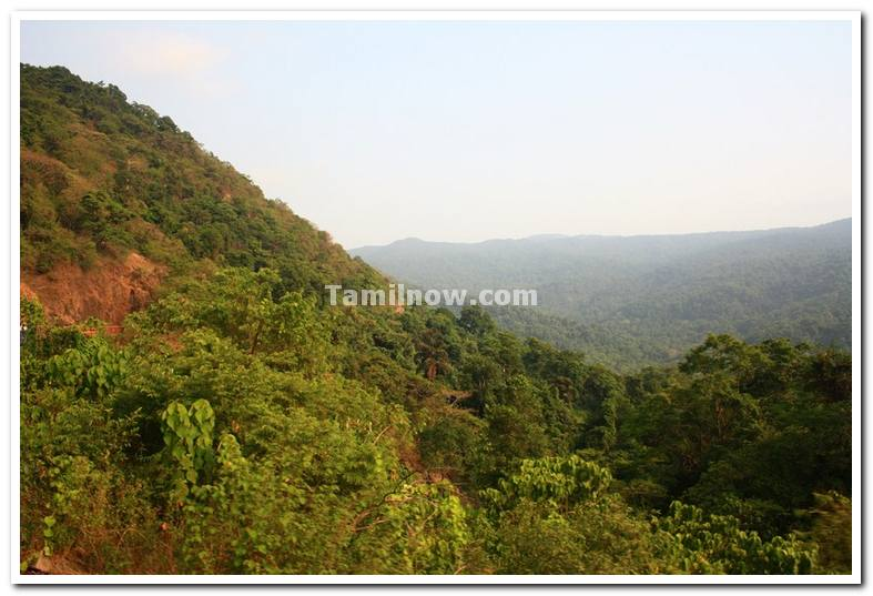View from train near dudhsagar falls