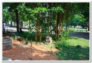 Beautiful mysore zoo 2