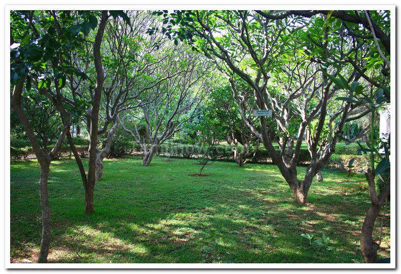Mysore zoo photos 3
