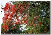 Mysore zoo stills 1