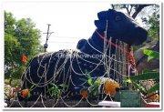Nandi bull chamundi hills 1