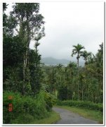 Nagarhole national park still 1