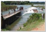 Nagarhole photo