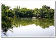 Ranganathittu bird sanctuary photo 1