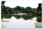 Ranganathittu bird sanctuary photo 2