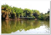 Ranganathittu bird sanctuary photo 3