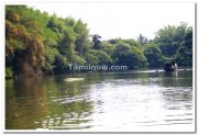 Ranganathittu bird sanctuary photo 4