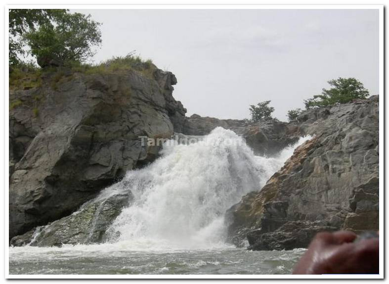 Hogenekkal falls photo