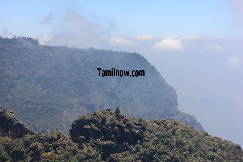 Elephant mountain view 253