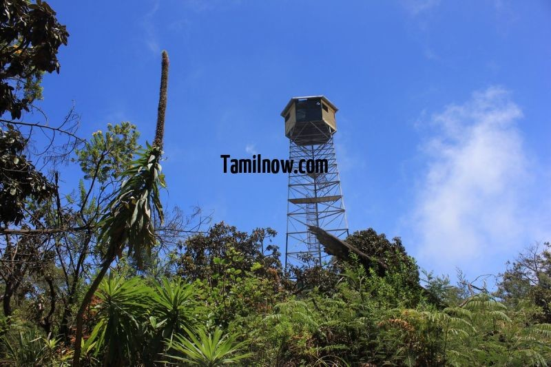 Fire watch tower kodaikanal 829