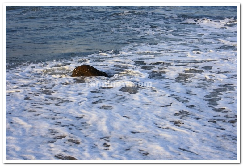 Kovalam beach tamilnadu 1