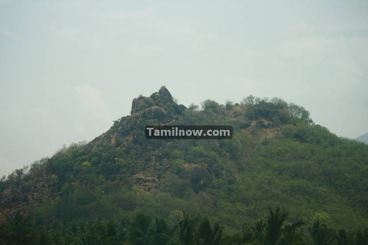 Nagercoil town photos 11