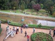 Ooty botanical garden 10