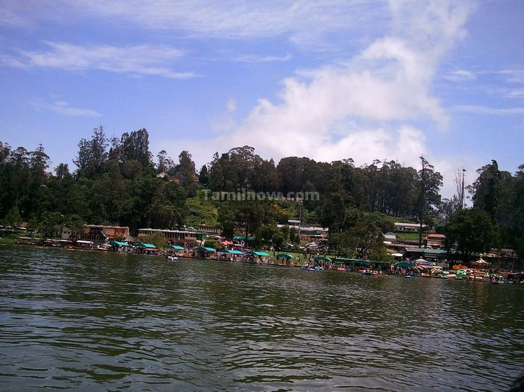 Ooty Lake Boats