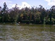 Ooty lake photo 9