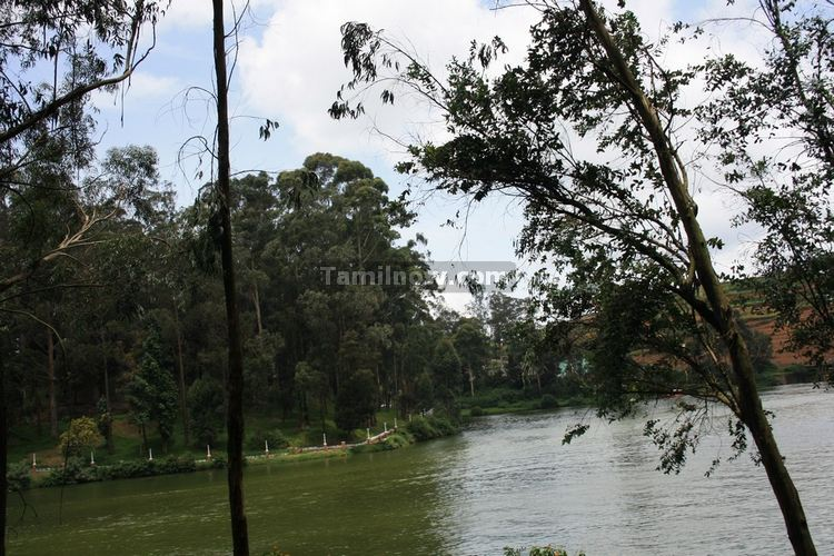 Ooty lake picture 8