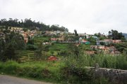 Ooty picture 10