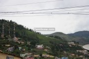 Ooty picture 11