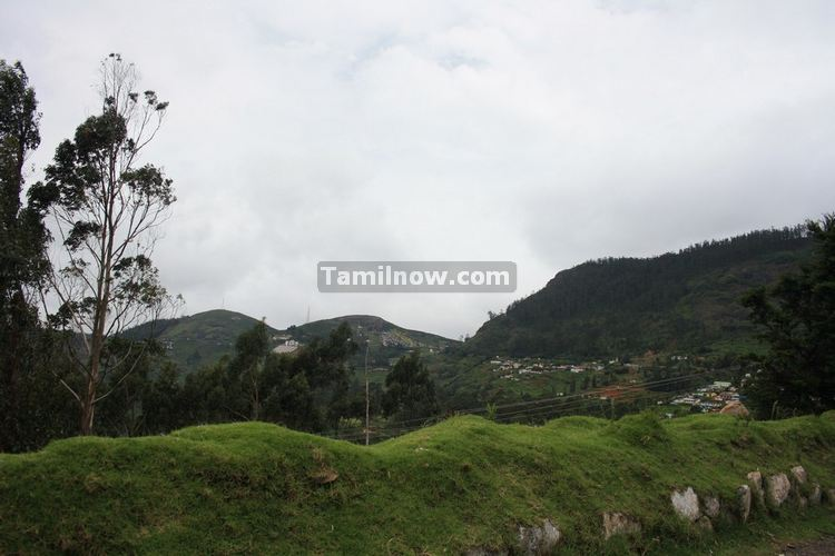 Ooty picture 12